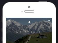 To the peak - UI mobile