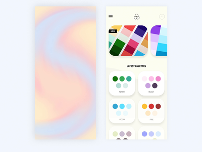 Colour Palette App Animation