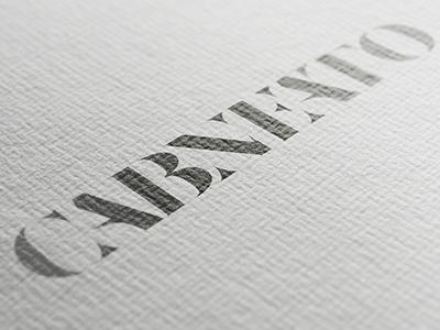 Logo Design Concept for Cabneato bold serif cabneato concept design logo