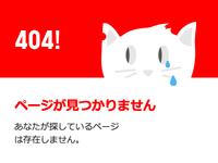 404! Error // Sad Cat
