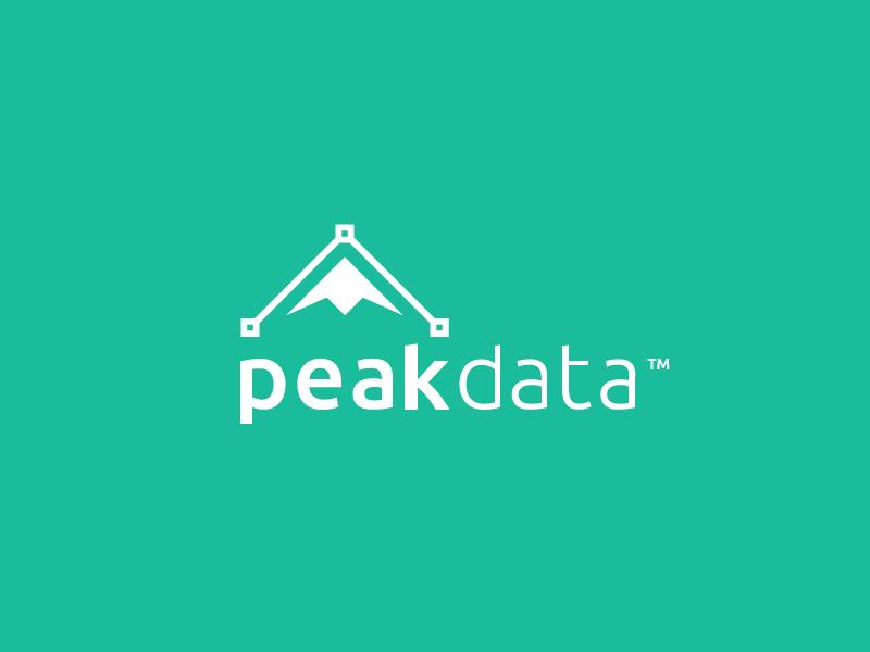 Peak Data mountain data clean flat logo point peak