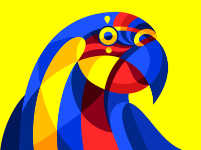 Carnimal VII illustration carnival carnaval colorful barranquilla colombia geometric vector bird tropical parrot macaw ara