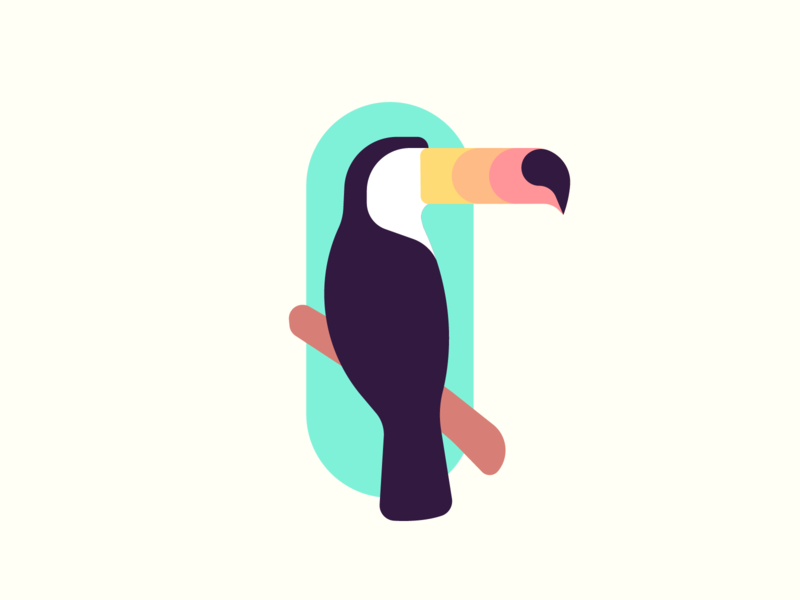 Toucan t-shirt shirt beautiful icon color vector art design zilux palm colour beak feathers wings parot bird tuocan tocan tucan toucan