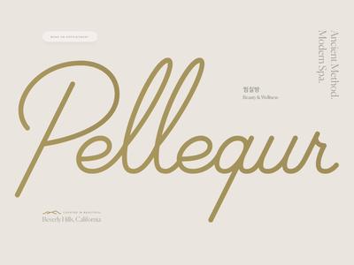 Pellequr Website web cbd relaxing zen wellness beverly hills design website spa pellequr