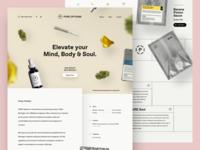 Pure Options Website