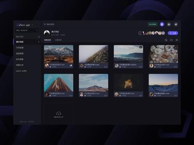 Luxx Video system