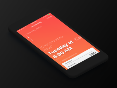 Cleanzy - Soonest Possible Time ux ui answer question on demand demand maid clean cleaning android ios mutlubiev