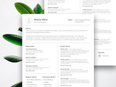 Minimal CV curriculum simple elegant clean cv minimal
