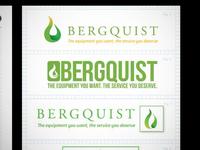 Bergquist Options