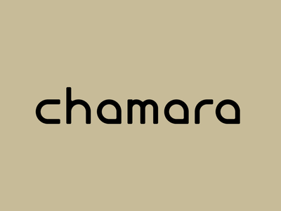 Chamara Design Studio Logo design firm simple typogaphy branding minimal logo brand design brand identity visual identity