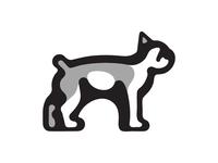 Boston Terrier Illustration Exercise