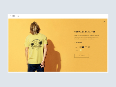 TCSS Lookbook Concept – Motion Study ux ui animation surf lookbook concept motion webgl interaction web design after effects