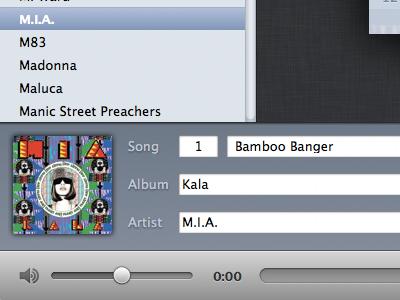 Music Metadata music app os x metadata ui