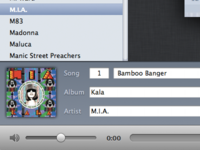 Music Metadata