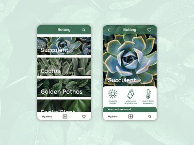 Botany icon ux app web design ui branding