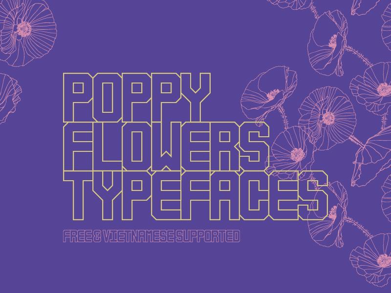 Poppy flowers 01