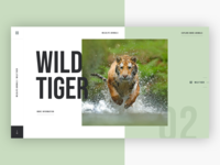 🐅 Wildlife Animals - Wild Tiger