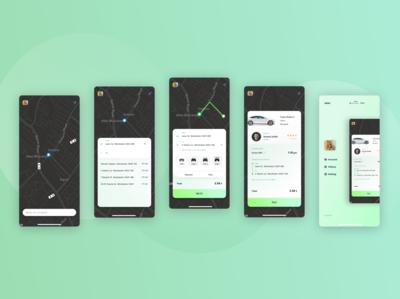 Mobile App Tesla Taxi