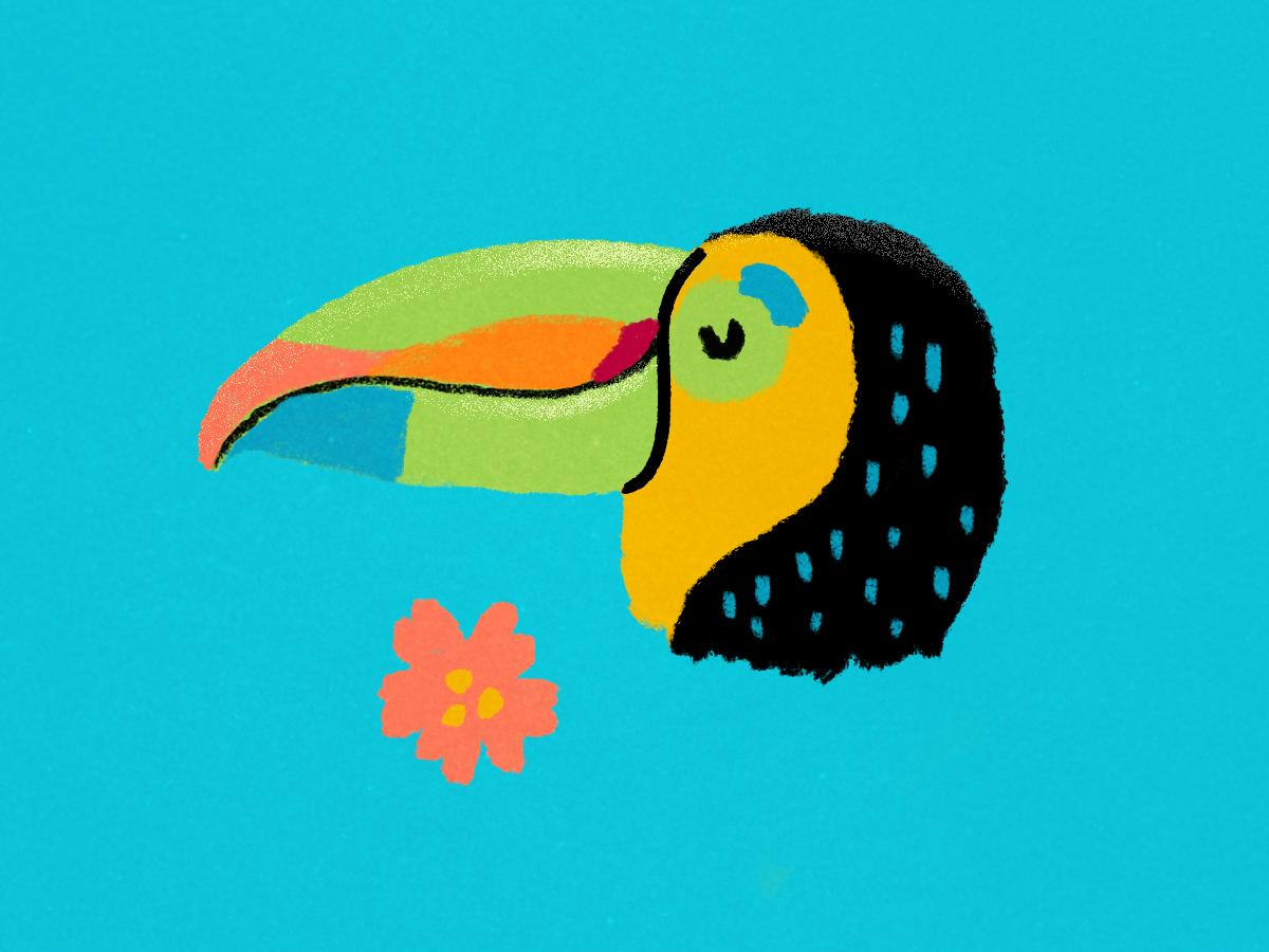 Tucán ilustracion animal green app flower tropical nature illustration tucan