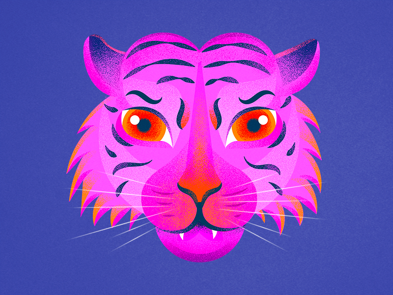 Rawr powerfull strong tigre power nature noise animal pink tiger