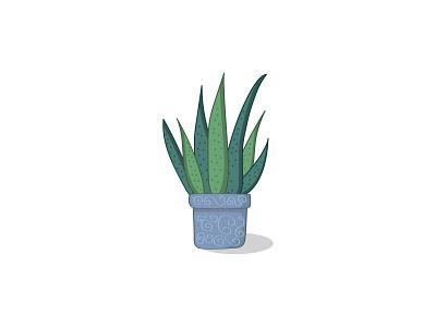 Aloe Vera Plant illustrator botanical illustration plant illustration design patttern botanical plant