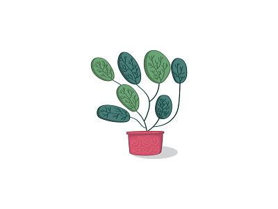 Succulent cactus potted plant botanical nature plants design illustration