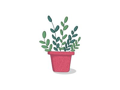 ZZ Plant plant nature pattern botanical design illustration
