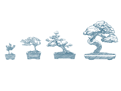 Bonsai Trees illustration drawing bonsai trees hand drawing