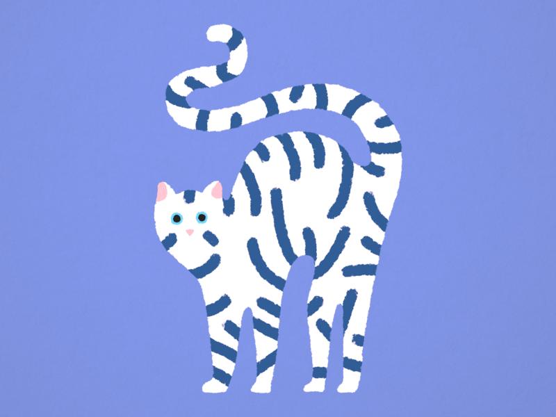 Cat ・ Illustration design wabi-sabi colorful indigo simple graphic art graphic design art minimalistic minimal clean artwork digital 2d digital art digital illustration drawing illustration dry cat