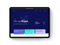 Drupal Professionals