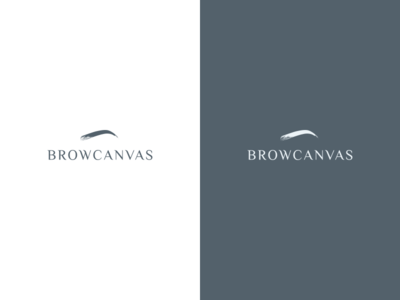 Brow Canvas - Logo Design corporate branding logo design