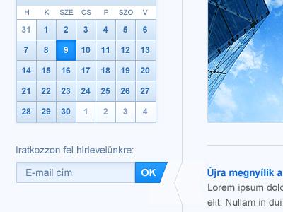 Website Layout form input gui blue web