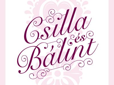 Wedding Invite illustration type typography pink invite wedding