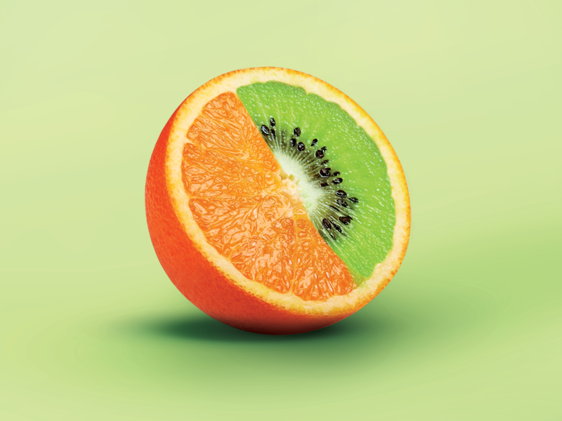 KiwiRange design graphic design