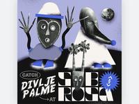 Party Flyer for Divlje Palme