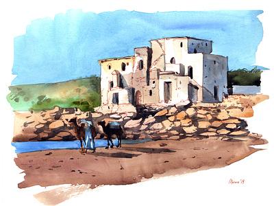 Camels portrait travel aquarelle watercolor nature sketch art watercolour illustration