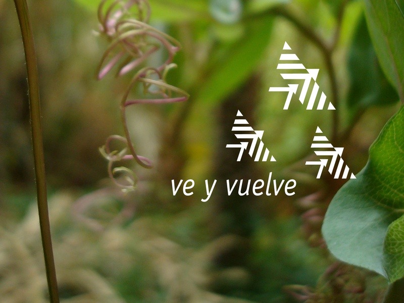 Ve y Vuelve travel logo design branding graphic design
