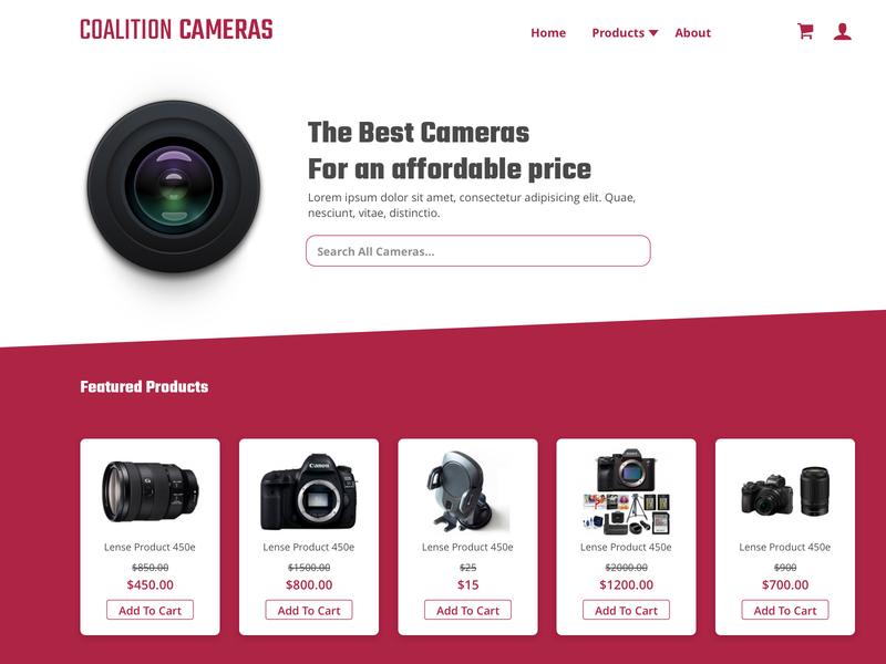 cameras website camera
