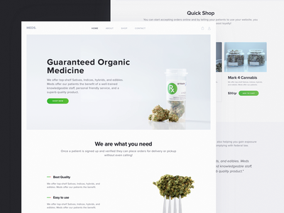 E-commerce Website for Cannabis Software Provider weed medical e-commerce landing ux ui theme software marijuana dispensary cannabis zajno