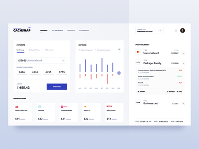 Finance Management Service accounting product clean design fireart management finance analytics website app startup ux ui