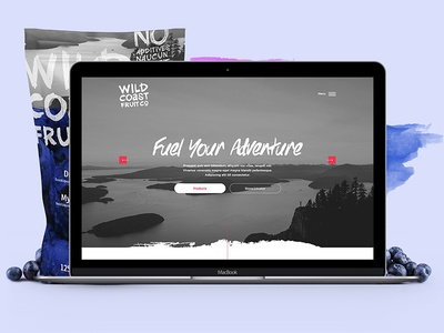 Wildcoast Fruit Co Site Design