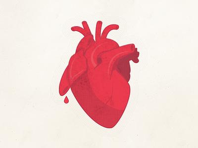 Love real heart organ bleeding love heart