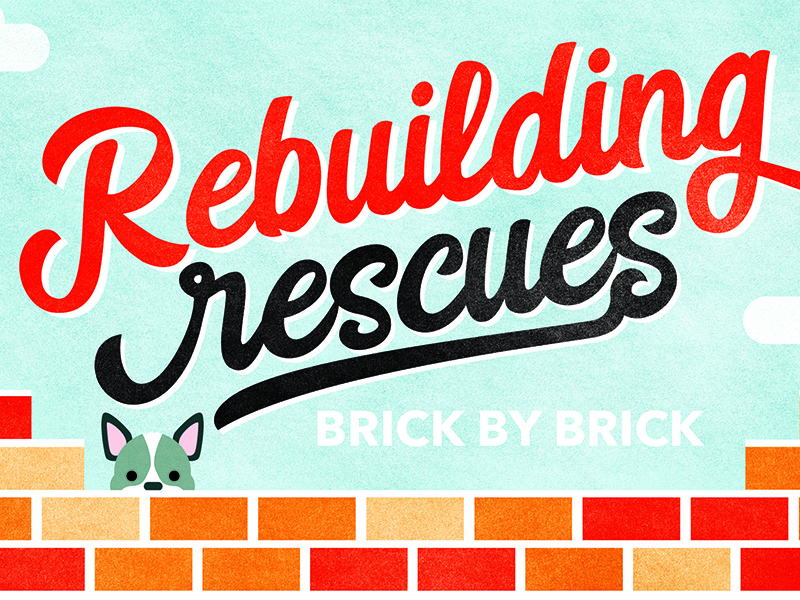 Rescue Rebuild Postcard brick french bulldog shelter dogs animals rescues