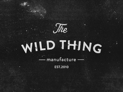 Wild Thing typography lettering type logotype logo