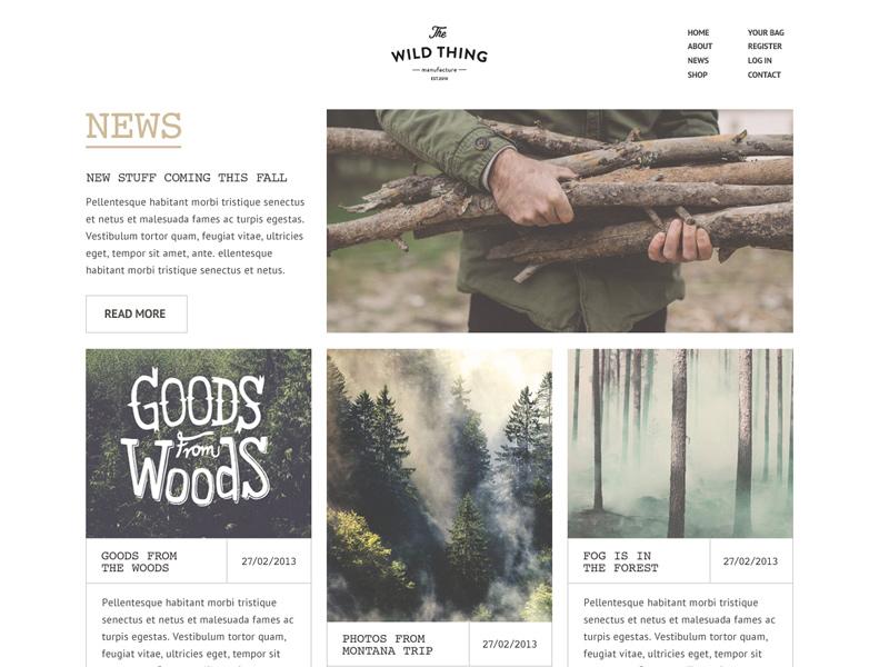 Wild Thing News / Blog layout web design blog website masonry minimal grid clean