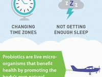 Travel Infographic Snippet
