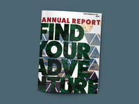 Levi Strauss & Co Annual Report