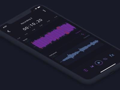 Go Record - Edit Screen
