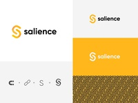 Salience logo concept