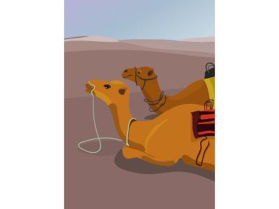 Morning in the desert camel morning desert illustration 2d vector adobe illustrator